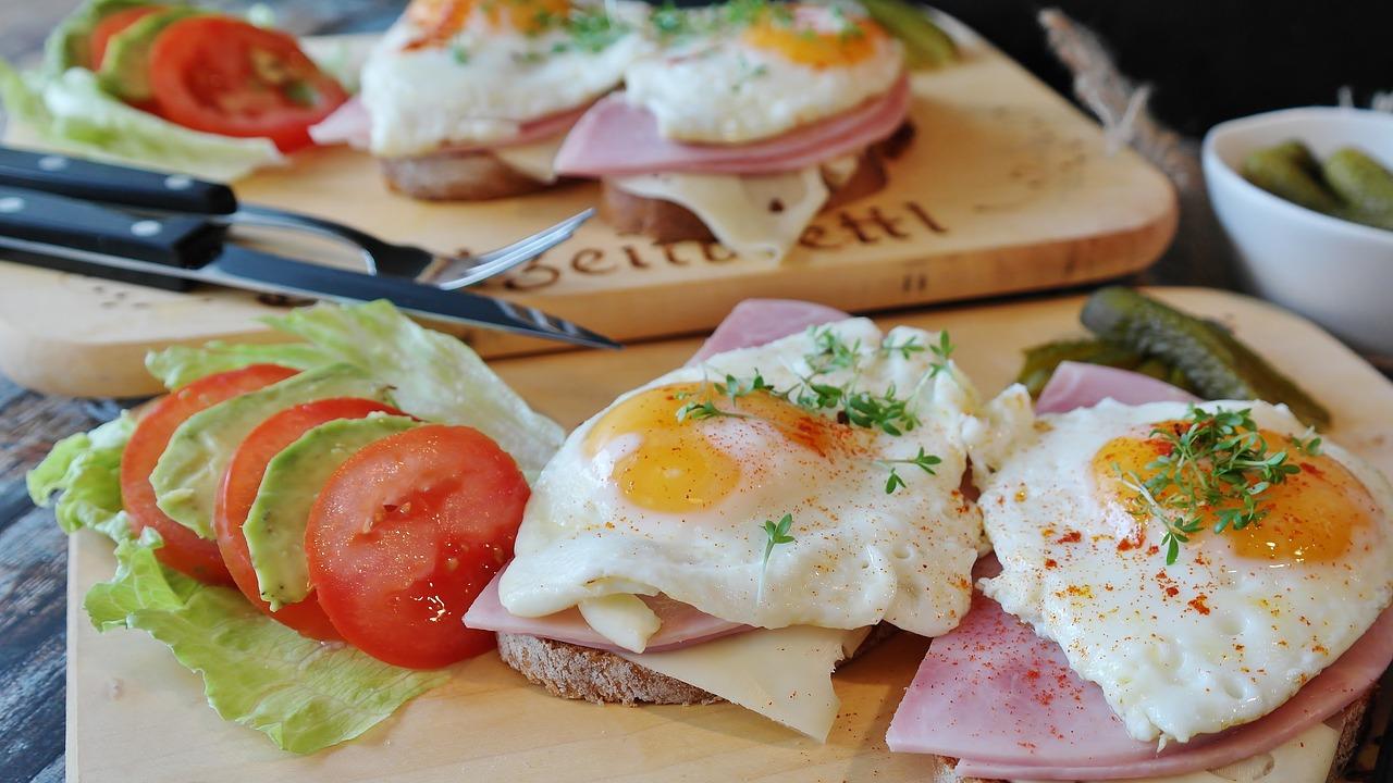 aliments protéines