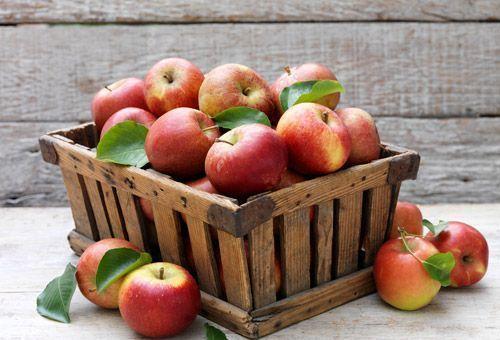 pomme brule graisse