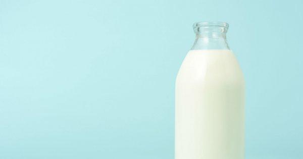 produits laitiers sans lactose